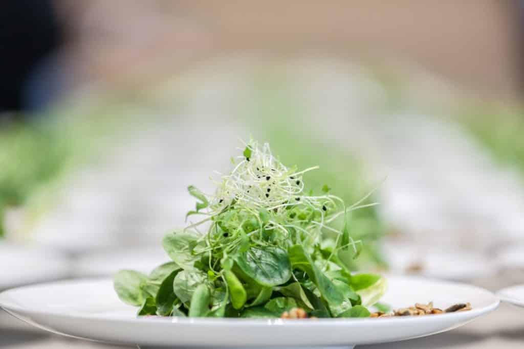Food-Bilder für Cateringservice voltino